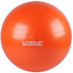 Фитбол GYM BALL 55см LiveUp