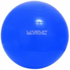 Фитбол GYM BALL 65см LiveUp
