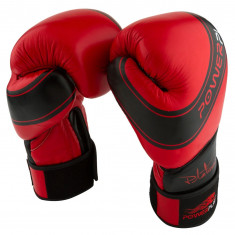 Боксерские перчатки PowerPlay 3023 кожа (14oz)
