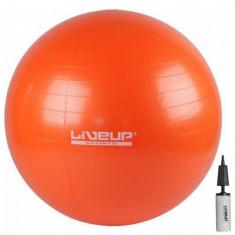 Фитбол LiveUp ANTI-BURST BALL 65 см