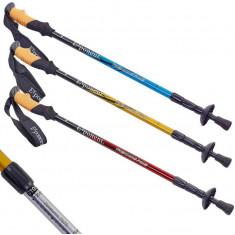 Палки для скандинавской ходьбы Exponent 8038 пара (55-135 см)