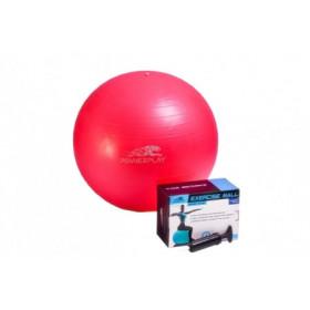 Фитбол мяч гимнастический PowerPlay 55см + насос